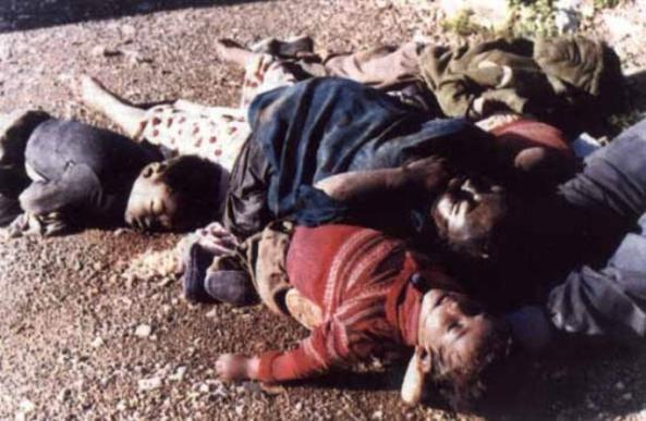 ذكرى (الأنفال) الإبادة الجماعية للكورد 265.jpg?w=593&h=