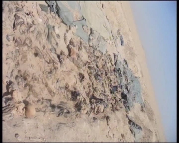 people shot through the head or buried alive as part of the former regime's Anfal genocide campaign