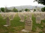 5912575-Halabja_Cemetery_Halabja